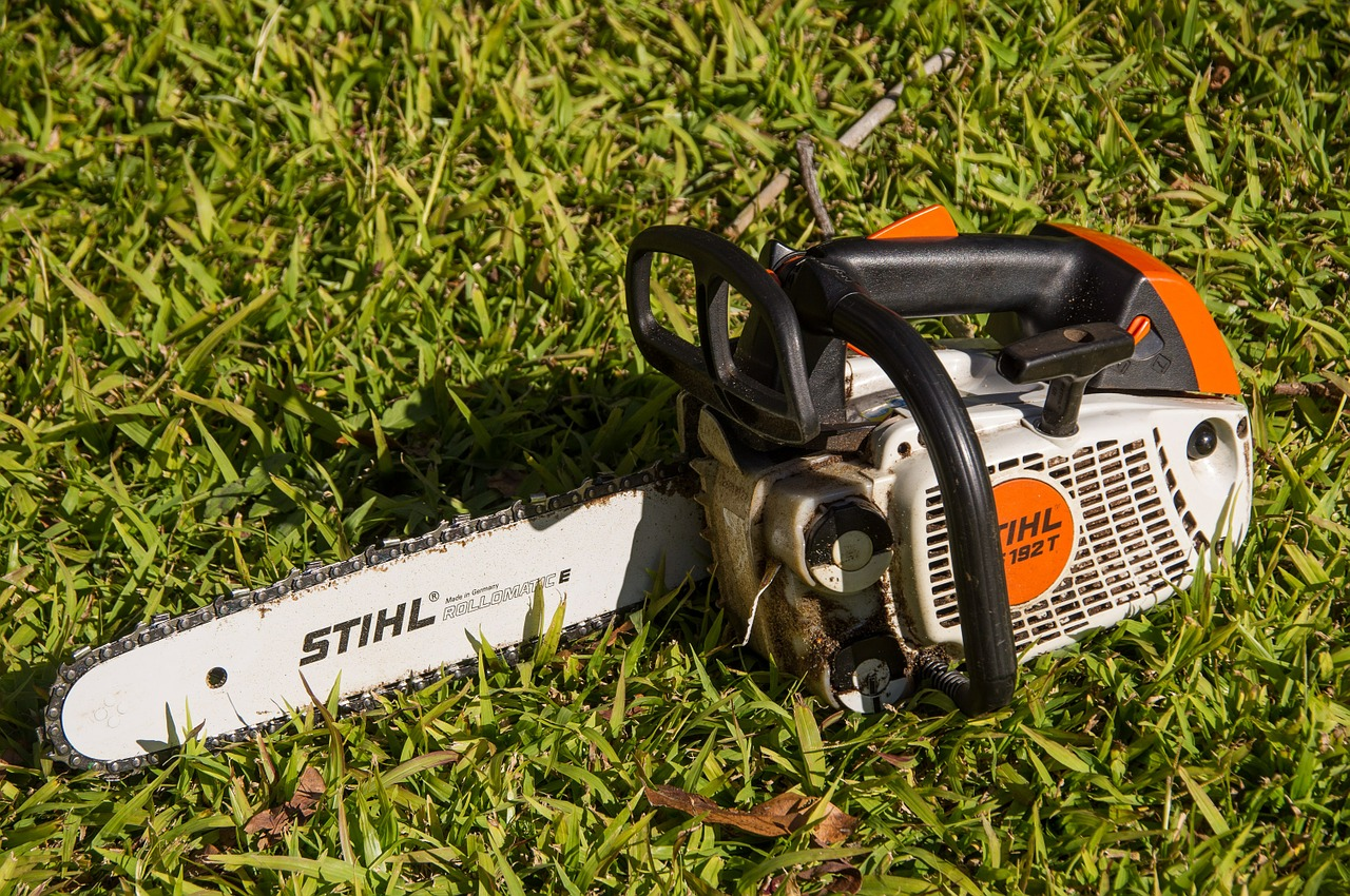 Garden Power Tools Buying Guide