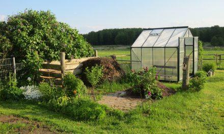 Choosing a Greenhouse
